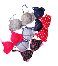 lmunderwear-category-bra-new2