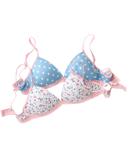 lmunderwear-category-teen-bras-new