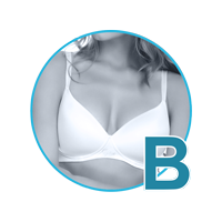 lmunderwear-category2-bra-cups-size-b