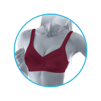 lmunderwear-category2-cardinal-minimizer-bra
