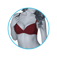lmunderwear-category2-classic-cardinal-bra