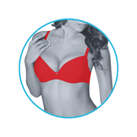 lmunderwear-category2-classic-red-bra