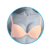 lmunderwear-category2-natural-push-up-bra